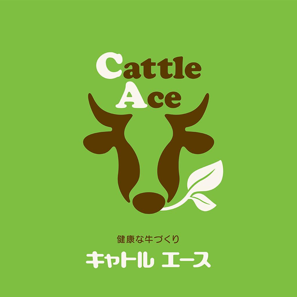 catle_ace3